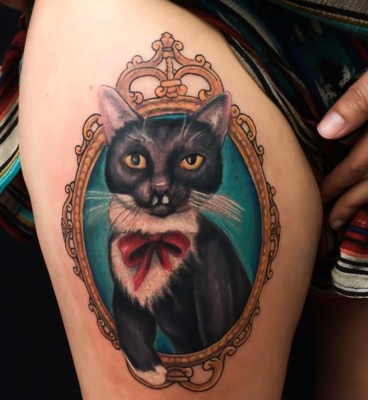 pisica4